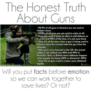 facts on guns